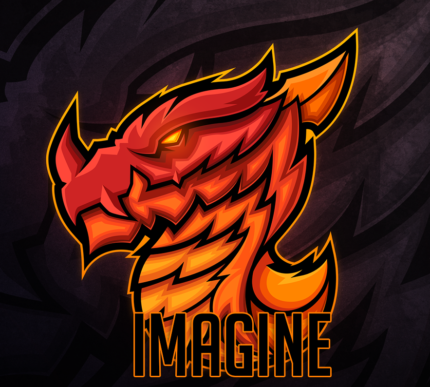 IMAGINE-EX